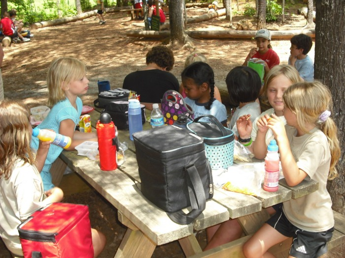 Wilderness camp page pic 7